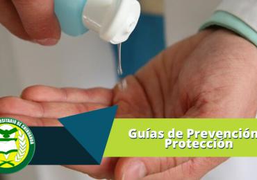 Guías de Prevención y Protección